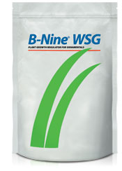 B-Nine WSG - Water Soluble Granule Plant Growth Regulator for Ornamentals