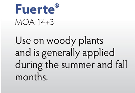 Fuerte Herbicide from OHP, Inc.